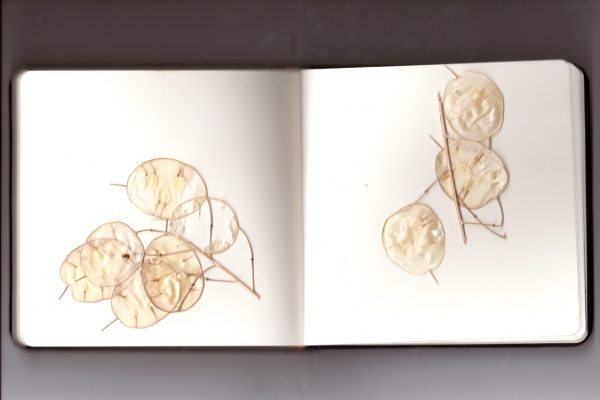 Copy of sketchbook10